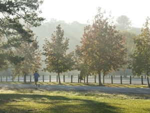 Photo courtesy of Memorial Park Conservancy